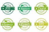 Set of stamps with words bio, fit, nature — ストックベクタ