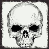 Skull vector for t shirt print or element grunge design — Stock Vector