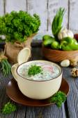 Russian spring and summer cold soup  with kefir — Stock Photo