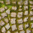 Old stone pavement with sprouting moss texture — Stock Photo #76397895