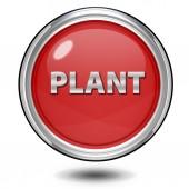 Plant circular icon on white background — Stock Photo