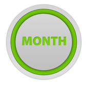 Month circular icon on white background — Stock Photo