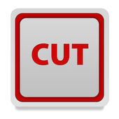 Cut square icon on white background — Stock Photo