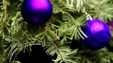 Coniferous Tree with Colorful Balls — Stock Video