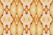 Beautiful seamless pattern — Stock Photo
