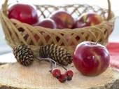 Autumnal composition with brier berry branch, apples and fir-cones — Stock Photo