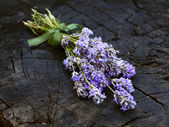 Lavender flowers on dark wooden stock — Stock Photo
