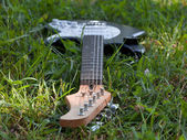Guitar dropped in wild grass — Stock Photo