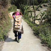Old woman heavily loaded with stack of bricks on her back walks along rural path — Stock Photo