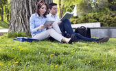 Grass and flowers and two people reading — Stock Photo