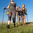 Group of hikers walks on grassy lawn — Stock Photo #77065471