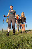 Group of hikers walks on grassy lawn — Stock Photo