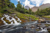 Mountain creeks fast moving — Stock Photo