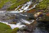 Mountain stream and meadow — Stock Photo