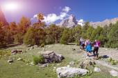 Group of Hikers Walking into Wilderness — Stock Photo