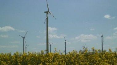 Wind Turbines in the field — Stock Video