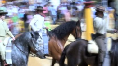 Horse men in Jerez — Stock Video
