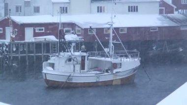Vessel in harbor in Norway — Stock Video