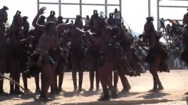 Girls of Himba Tribe dancing — Stock Video