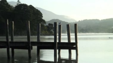 Jetty on Derwent lake — Stock Video