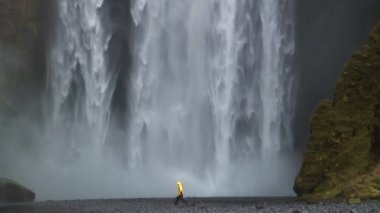 Skogafoss waterfall Southern coast Iceland — Stock Video