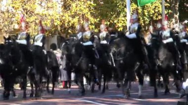 Passing troop of Horse Guards — Stock Video