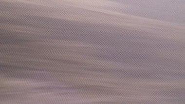 Sandstorm Namib Desert — Stock Video