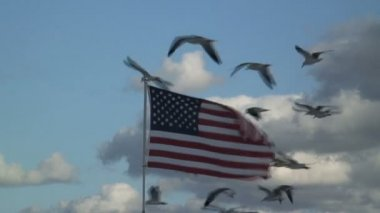 American Flag against blue sky — Stock Video