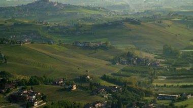 Italian vineyard  view — Stock Video