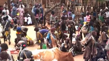 People of the Hamer Tribe on market day — Vídeo Stock