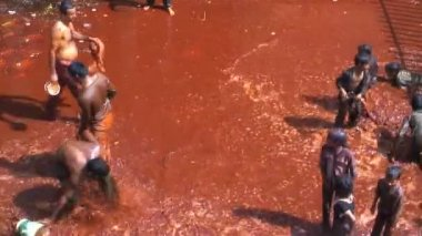 Holi festival de la india — Vídeo de Stock