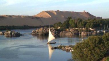 Sailing Boat in Nile river — Stock Video