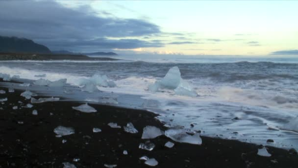 Floating ice on Frozen Sea — Vídeo de stock