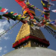 Prayer flags flying from the  Boudhanath Stupa — Stock Video #62039193