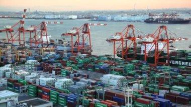 Cargo Container Port — Stock Video