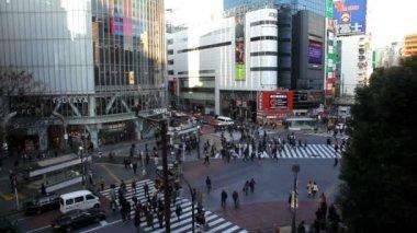 Shibuya district in Tokyo — Video Stock