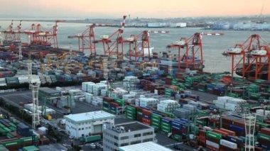 Kargo konteyner liman — Stok video