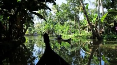 Canoe passing along backwaters — 图库视频影像