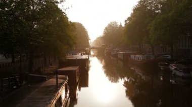 House boats moored along Amsterdams many canals at sunrise — Stock Video