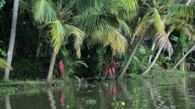 People on banks of Kerala backwaters — Stock Video