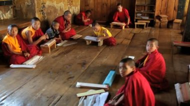 Young monks studying — Stock Video