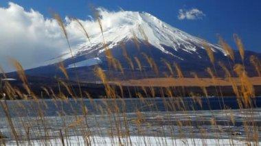 Mountain Fuji and Lake Yamanaka — Stock Video