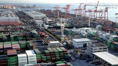 Busy Japanese Cargo Container Port — Stock Video