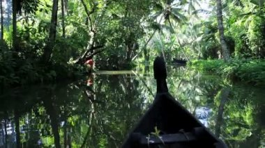 Canoe passing along backwaters — Stock Video