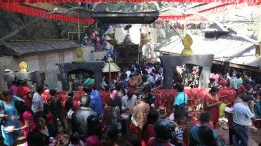 Dakshinkali Hindu Temple — Stock Video