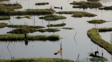 Workers at  Loktak Lake — Stock Video