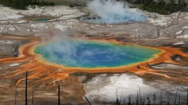 Striking coloration Grand Prismatic Spring — Stock Video