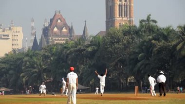 Team of cricketers playing a cricket match — Stock Video