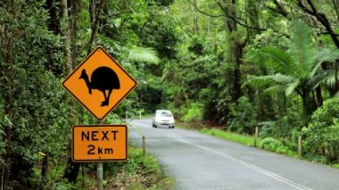 Warning sign for the Cassowary bird,  Queensland — Stock Video