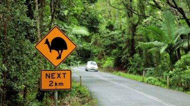 Warning sign for the Cassowary bird,  Queensland — Stockvideo